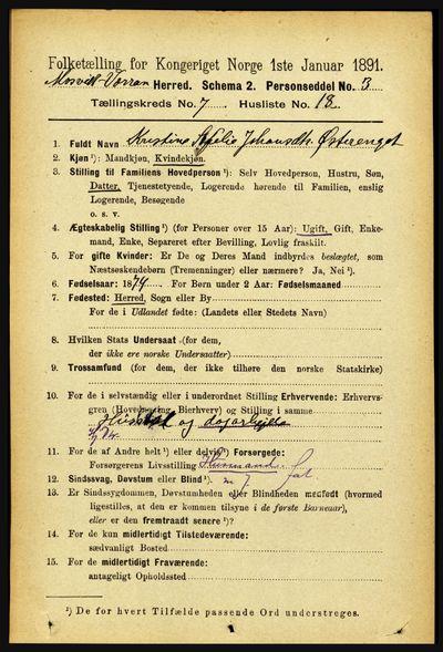 Image from object titled Folketelling 1891 - Mosvik og Verran - personsedler - side 3020