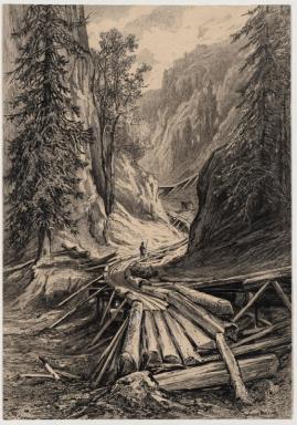 Holzriese 'in der Eng' bei Reichenau