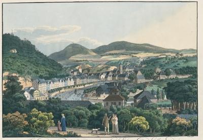 Ansicht der Stadt Carlsbad. Vue de la ville de Carlsbad