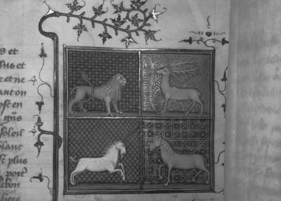Livre des propriétés des choses / De propriétés rerum — Beginn des 18. Buches: ... des bestes, Folio fol. 352