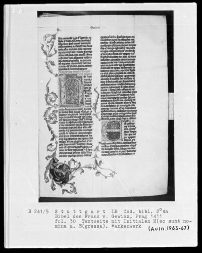 Lateinische Bibel in zwei Bänden für Franz von Gewicz — Initialen H (ec sunt nomina) und E (gressa), verbunden durch Rankenwerk, Folio 30recto