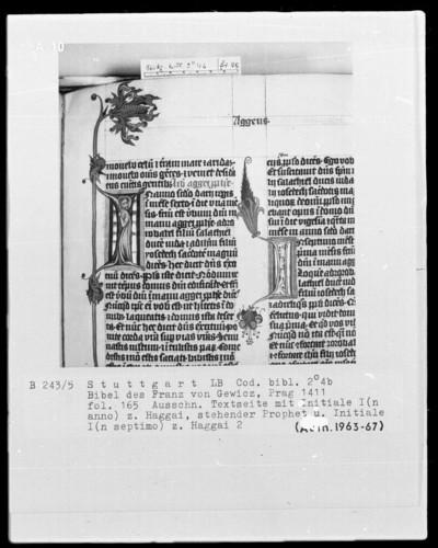 Lateinische Bibel in zwei Bänden für Franz von Gewicz — Initiale I (n anno) mit dem Propheten Aggäus, Folio 165recto