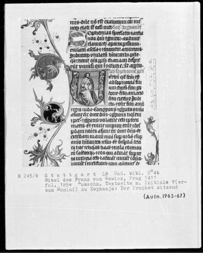 Lateinische Bibel in zwei Bänden für Franz von Gewicz — Initiale V (erbum domini) mit dem Propheten Sophonias, Folio 185verso?