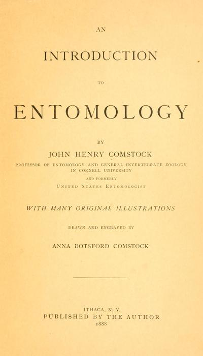 Image from object titled An introduction to entomology, by John Henry Comstock ... with many original illustrations drawn and engraved by Anna Botsford Comstock. [pt. 1]