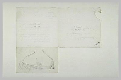 autographe ; 19 octobre 1899, Paris, à Mlle Cogniet ; Buste de femme, de dos