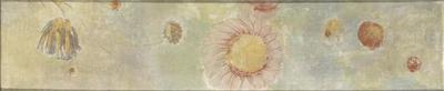 tableau ; Frise de fleurs, marguerite rose