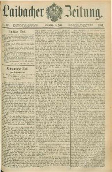 Image from object titled Laibacher Zeitung 1878 06 04