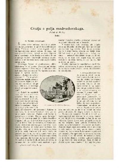 Image from object titled Iz domovine. IV