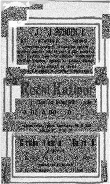 Image from object titled Ročni kažipot po Ljubljani in kranjskih mestih; in koledar za navadno leto 1905