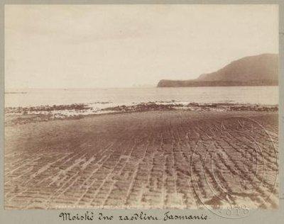 Mořské dno za odlivu - pravidelné útvary způsobené erozí
