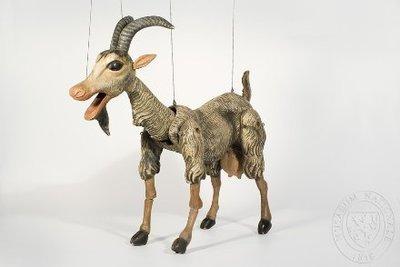 Loutky kozy