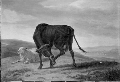Vache et brebis dans un paysage