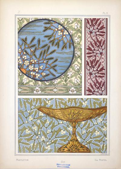 Image from object titled Mistletoe