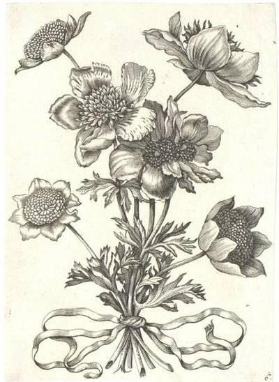 Image from object titled Blumen, Blatt 6 aus einer Folge von Blumendarstellungen (evtl. aus dem Neuen Blumenbuch)