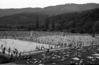 """Image from object titled """"5000"""" Leute im Freiburger Strandbad: Liegewiese und Becken von oben"""
