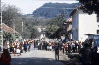 Image from object titled Huta Certeze: Straße mit Trachtengruppen