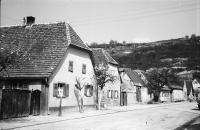 Image from object titled Niederrimsingen: Haus mit blühendem Baum