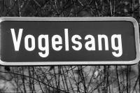 Image from object titled Niederrimsingen: Straßenschild: Vogelsang