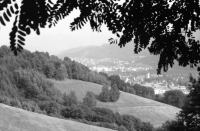 Image from object titled Freiburg: [vom Waldrand, Blick auf Stadtgebiet]