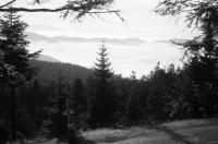 Image from object titled Mummelsee: Hochschwarzwaldstraße, Nebel über dem Rheintal beim Mummelsee