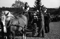 Image from object titled St. Märgen: Tag des Schwarzwälder Pferdes; Viergespann mit Trachtenmaidlis