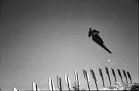 Image from object titled Neustadt: Deutsche Nordische Skimeisterschaften; Springer
