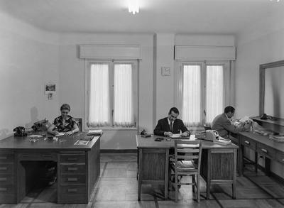 Image from object titled Almacén y oficinas de relojería Omega (Despacho con vitrinas) con personal