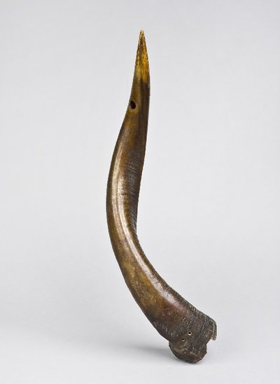 Image from object titled trompe traversière courbée