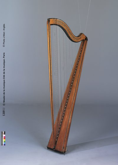 Image from object titled Harpe