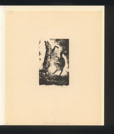 Reineke und Isegrim der Wolf beim Kampf