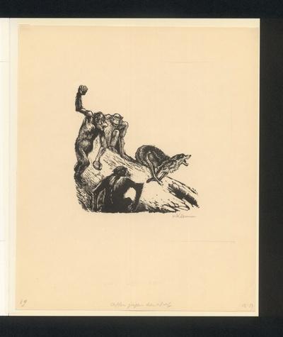 Isegrim der Wolf auf der Flucht vor den Meerkatzen