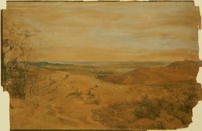 Die Quolitzer Berge auf Jasmund
