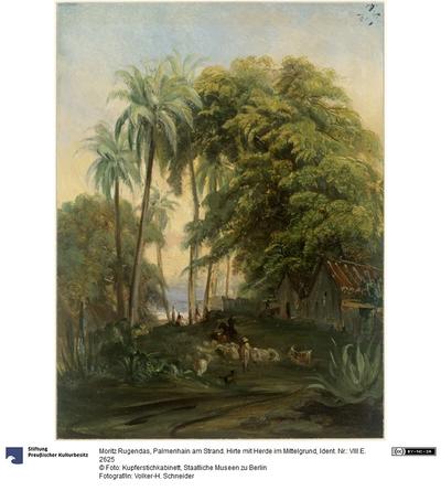 Palmenhain am Strand. Hirte mit Herde im Mittelgrund