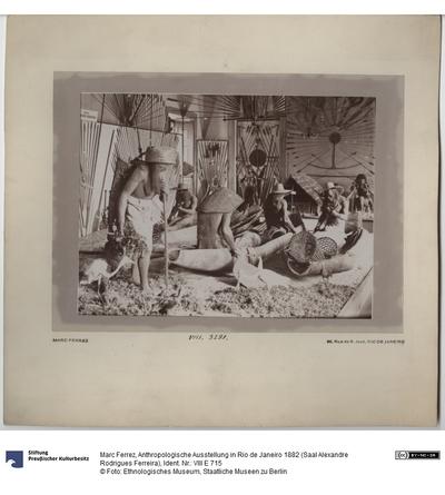 Anthropologische Ausstellung in Rio de Janeiro 1882 (Saal Alexandre Rodrigues Ferreira)
