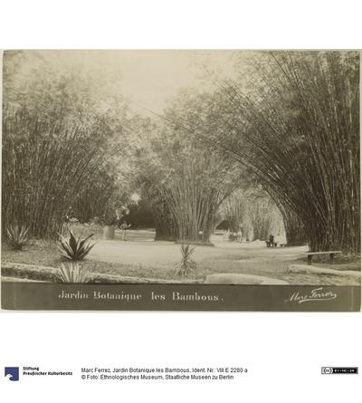 Jardin Botanique les Bambous