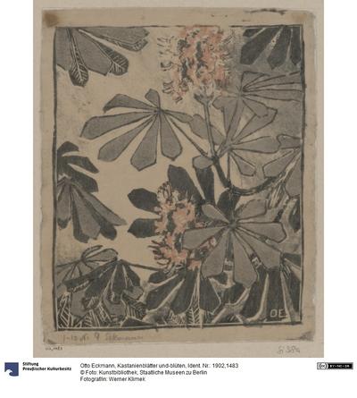 Kastanienblätter und-blüten