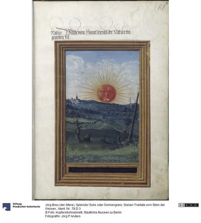 Splendor Solis oder Sonnenglanz. Sieben Traktate vom Stein der Weisen.