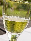 Half empty glass of white wine in summer garden  credit: Marie-Louise Avery / thePictureKitchen / TopFoto