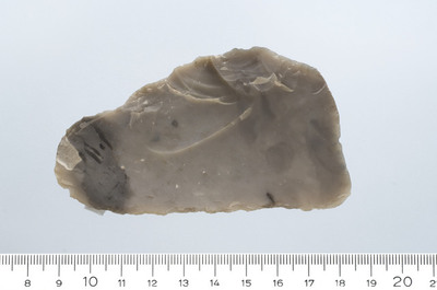 Image from object titled flintblad