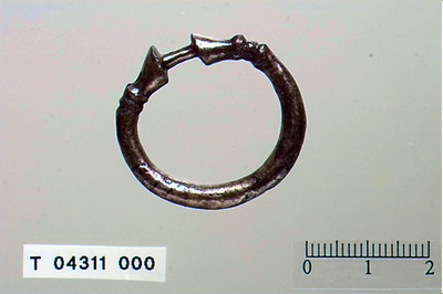 Image from object titled ringnaal/Ringen