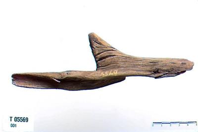Image from object titled Skjerding