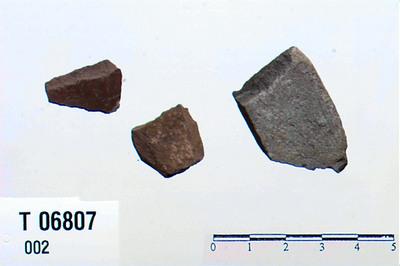Image from object titled Skjerver
