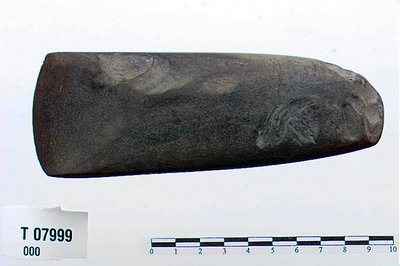 Image from object titled Hulmeisel eller hulsleben tverøkse