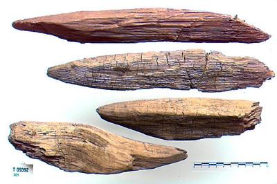 Image from object titled Myrpæle