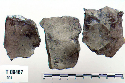 Image from object titled Flintskrabere