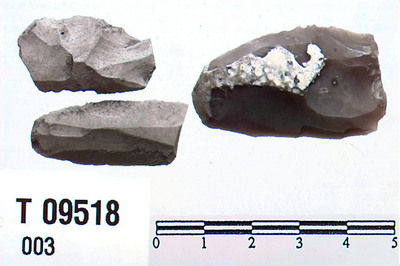 Image from object titled Flekkeskraber