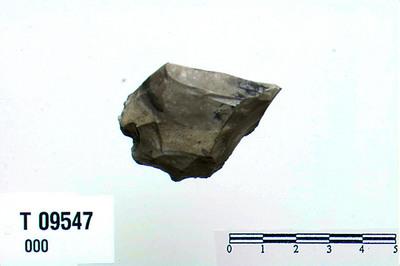 Image from object titled Skiveskraber