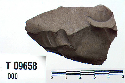 Image from object titled kjerneøkse