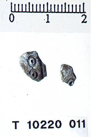 Image from object titled Benstykke med ring
