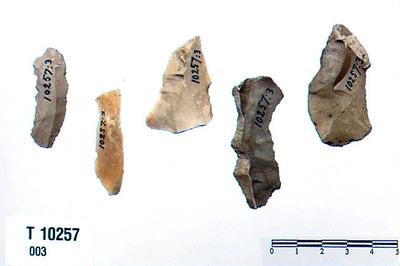 Image from object titled flekkesag